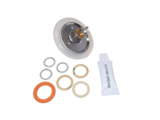1021564 Worcester 87161110380 Diaphragm Kit